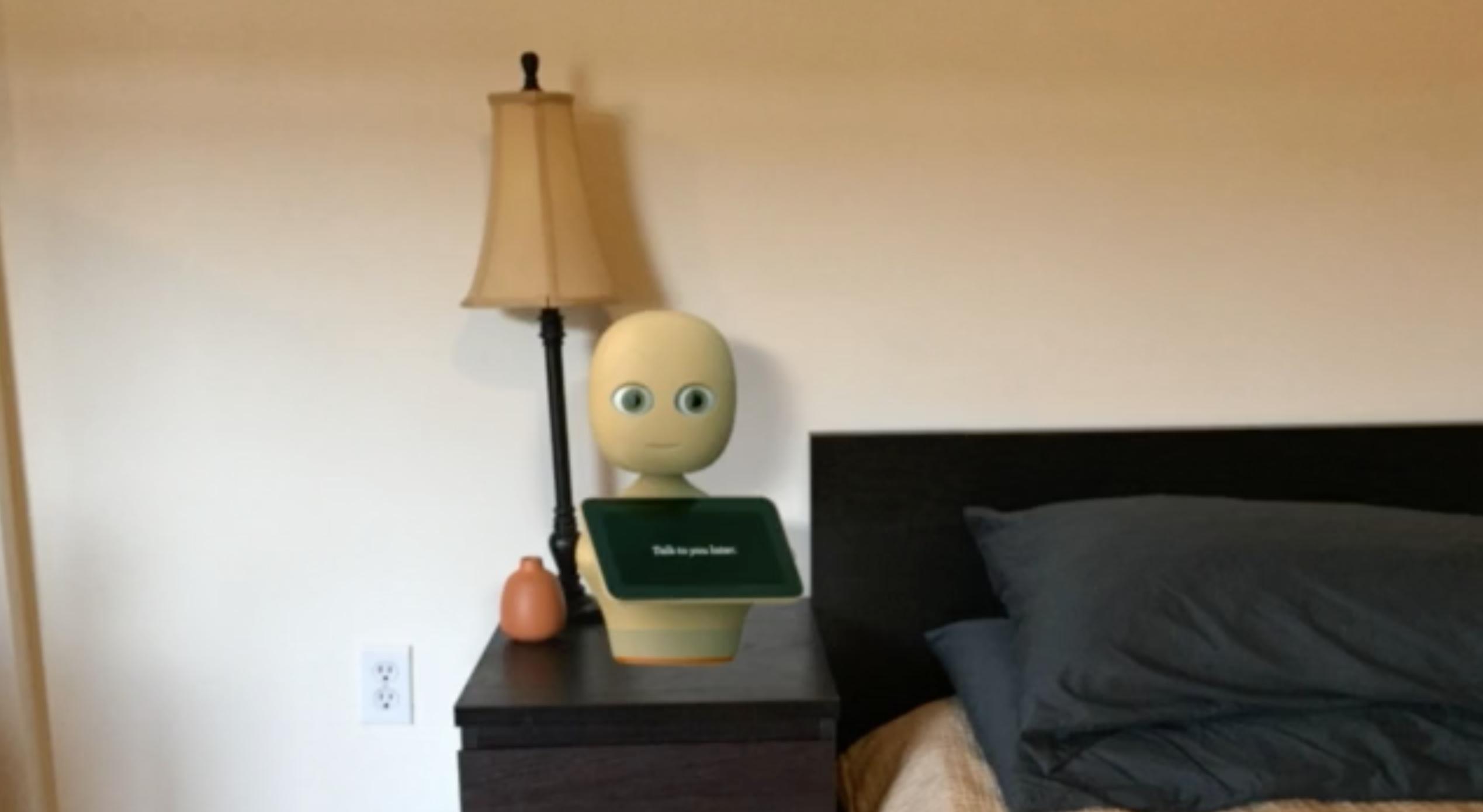 emotion recognition SDK for social robotics