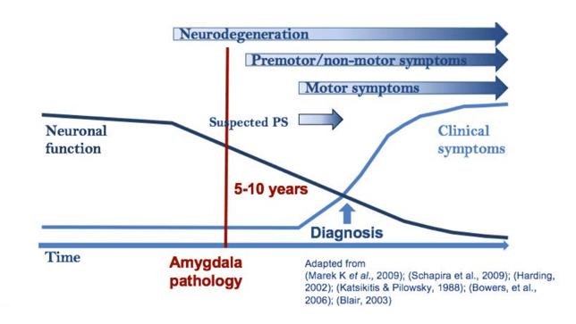 neurodegeneration.png