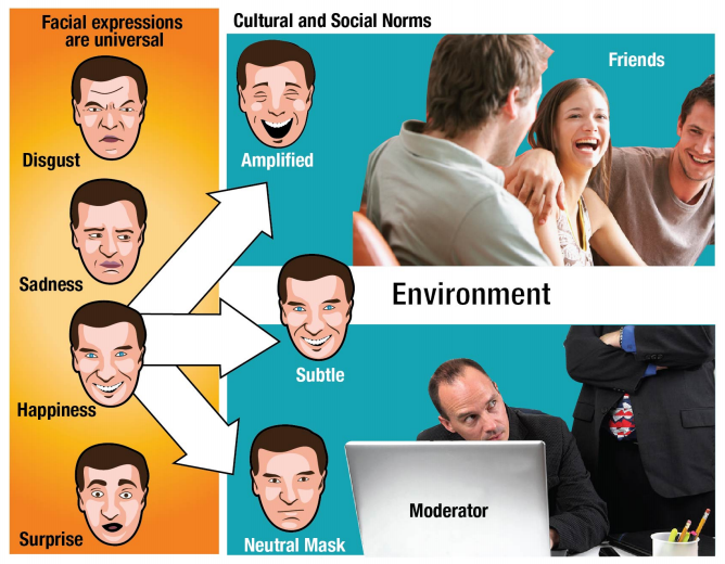 market research testing environment for emotions and facial expressions