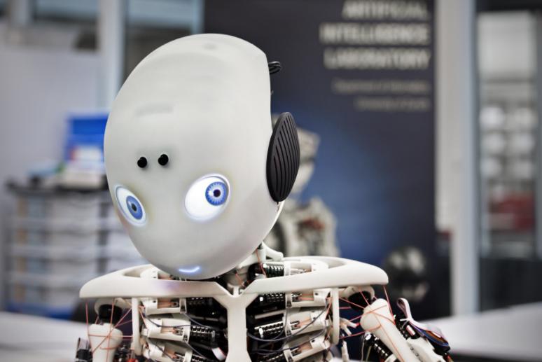 SDK on the Spot: Roboy Social Robot Features Emotion AI